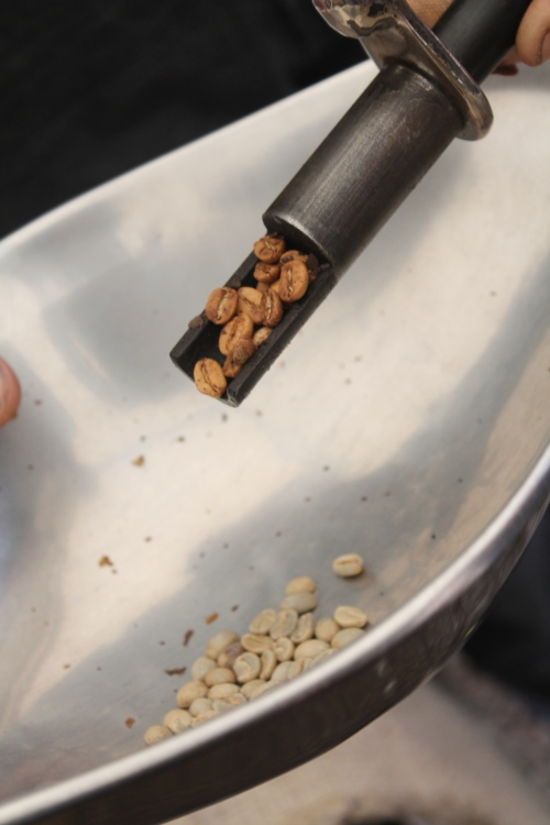 removing a sample to check the roast